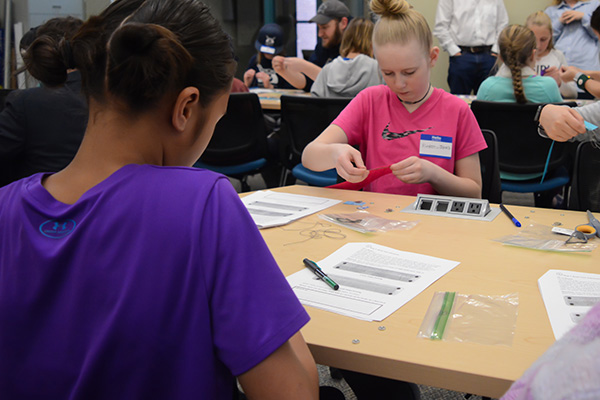 Teal Students Practice Teaching the Wonders of Electricity | CEHS